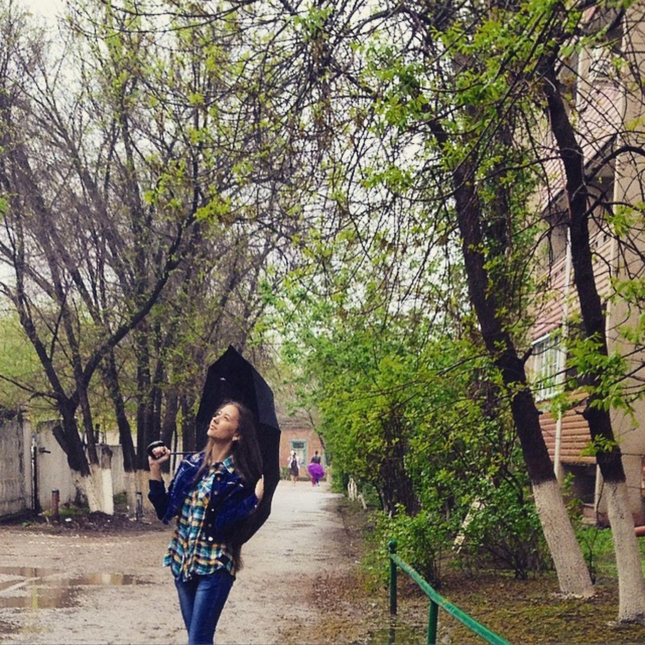 Природа свежийвоздух зелень  Дождь Russia Freshness Green Nature