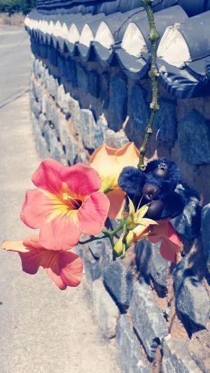 봄이 다가 온다