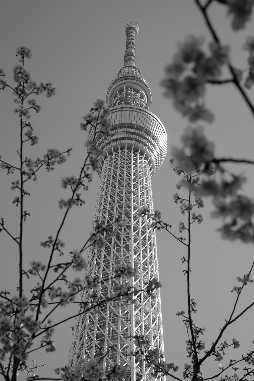 tower, tall - high, architecture, low angle view, built structure, travel destinations, building exterior, tourism, travel, communication, city, skyscraper, day, no people, sky, modern, outdoors, tree, nature