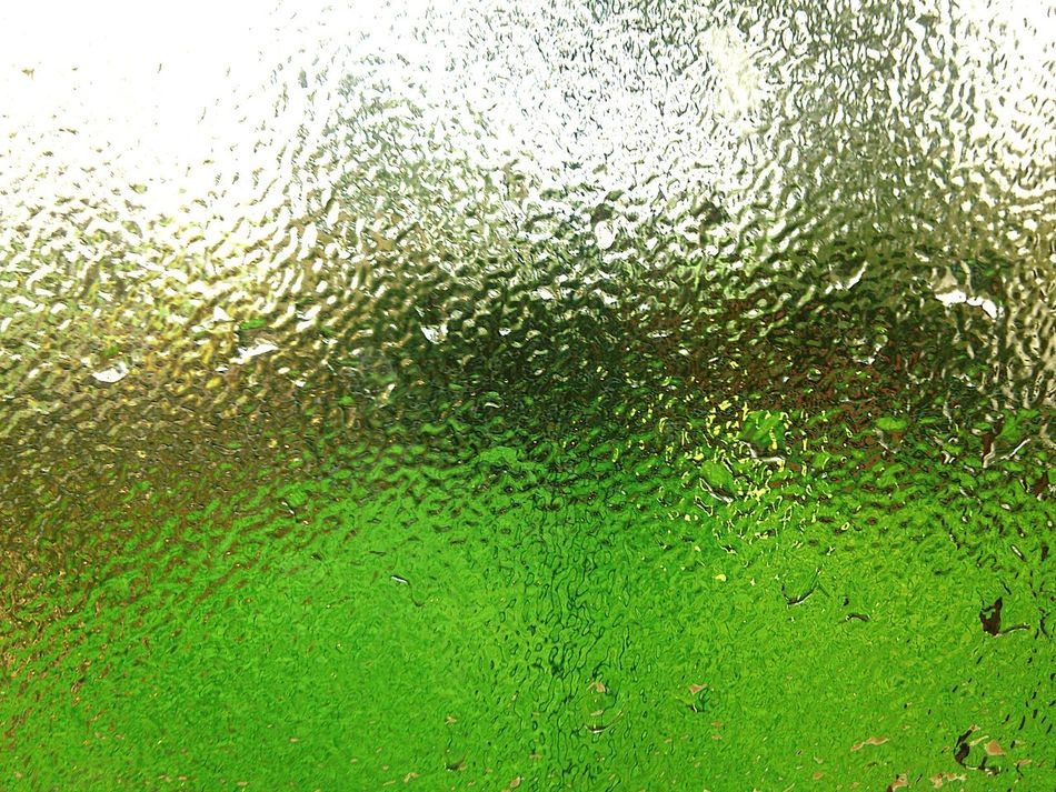 Mint By Motorola AfterShower Green Through The Window Water Droplets