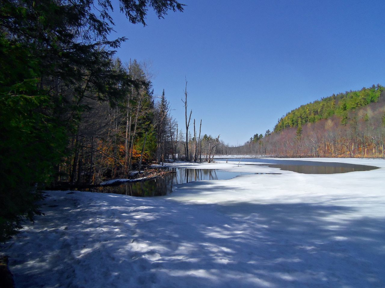 Spring thaw on the lake in the northern wilderness Beauty In Nature Blue Clear Sky Day Forest Ice On Lake Ice Out Lake Nature No People North Land Northern Lake Outdoors Scenic Scenics Sky Spring Spring Day Spring Thaw Spring Time Tranquil Scene Tranquility Tree Water Winter Is Over