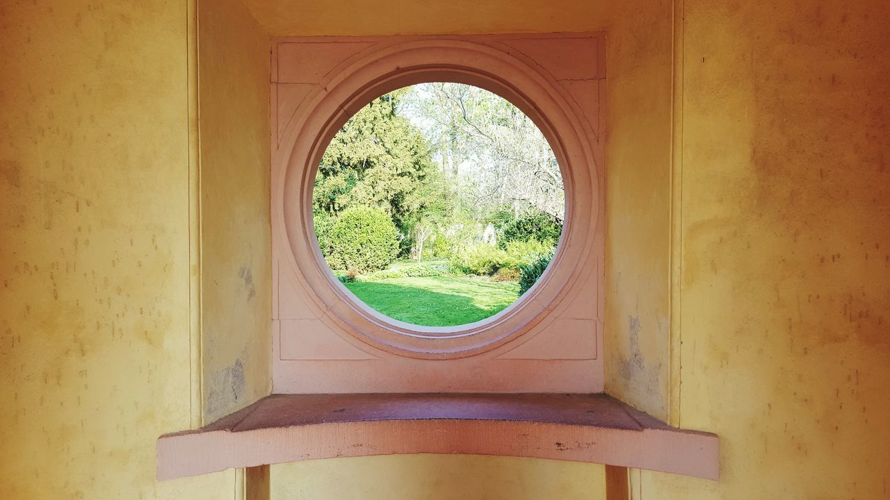 window, indoors, no people, day, architecture, built structure, tree, close-up, nature