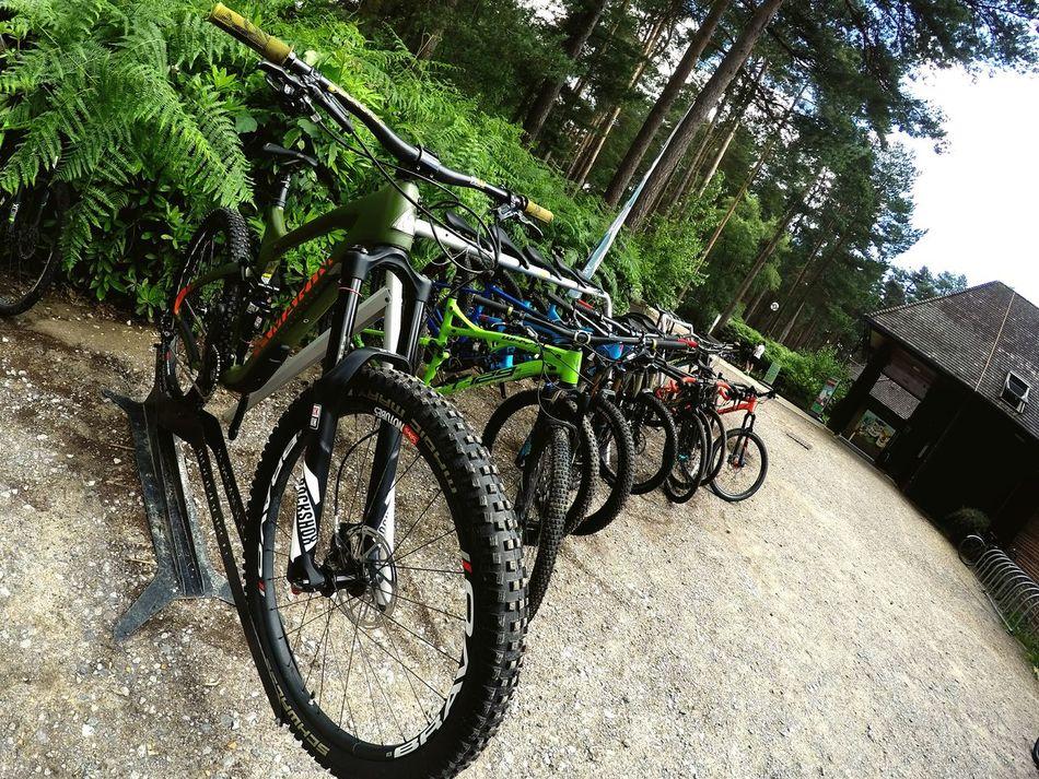 resting place. 🚴💙 Bike Bike Love Bike Photography Swinley United Kingdom