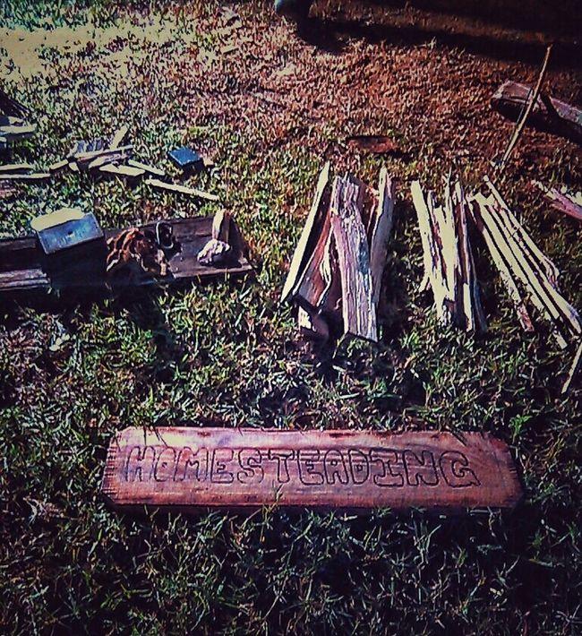 Homesteading Survival Survivalskill Woodsman