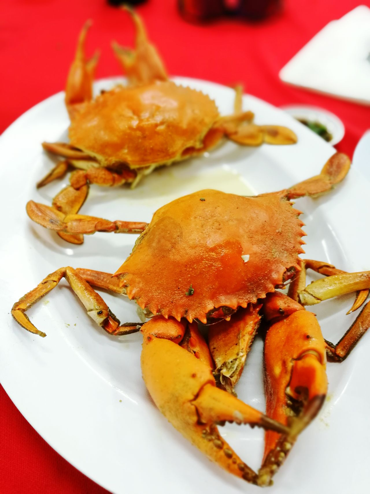 Crabs Celebration Food Plate Ready-to-eat Indoors  No People Crab Crabs Crab - Seafood Seafood Lovers Saltbakedcrabs