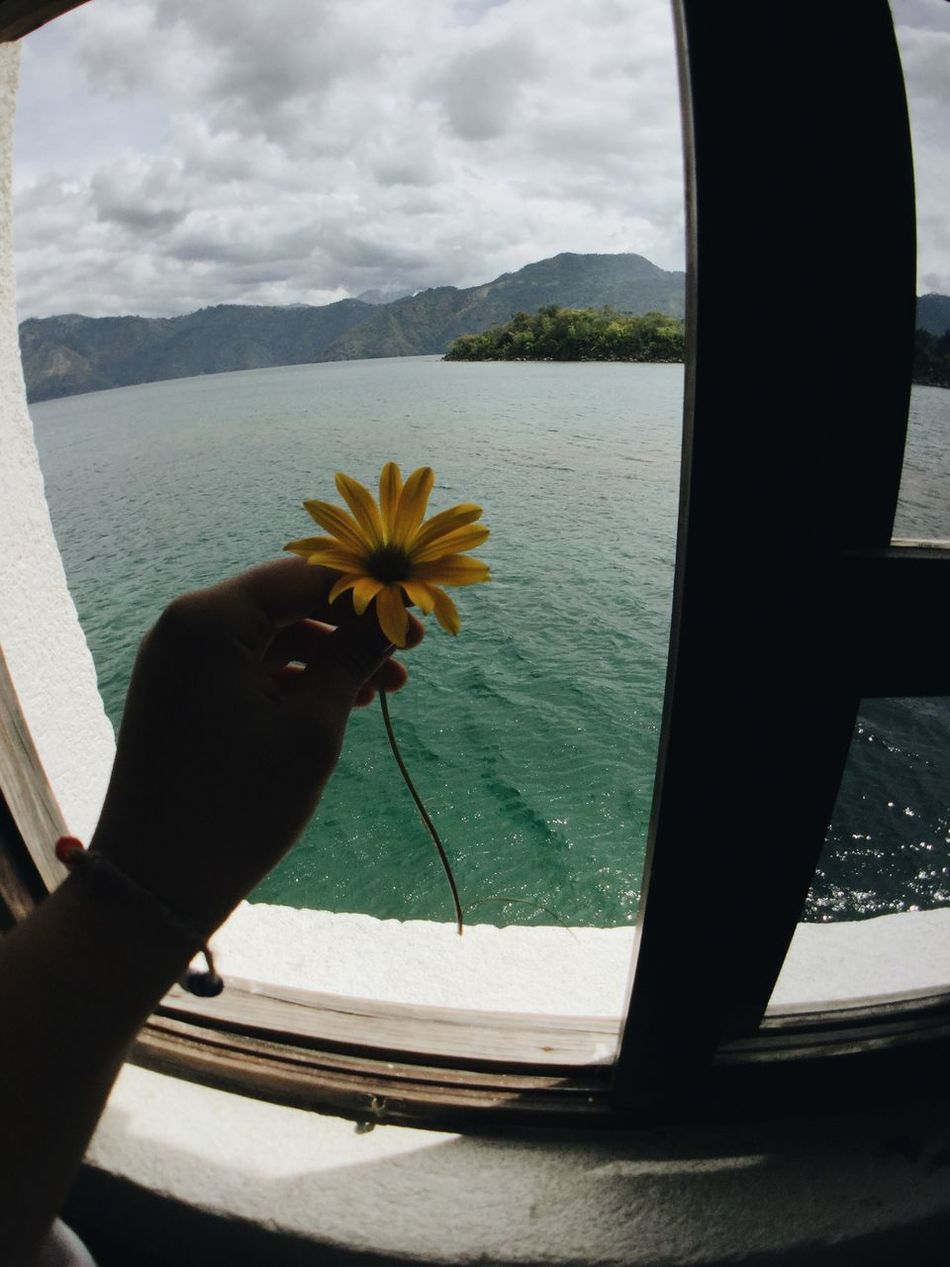 Simple Things Are The Best  ✨ Flower Nature Beauty In Nature Sea Human Hand Day Water Human Body Part One Person Sky Close-up Scenics Indoors  Freshness Mountain Flower Head