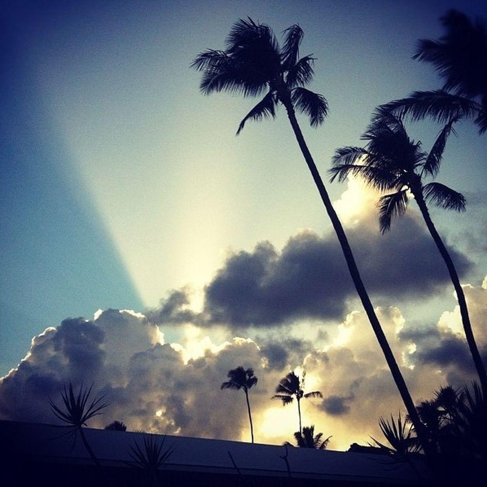 My View At Lihue, Hawaii