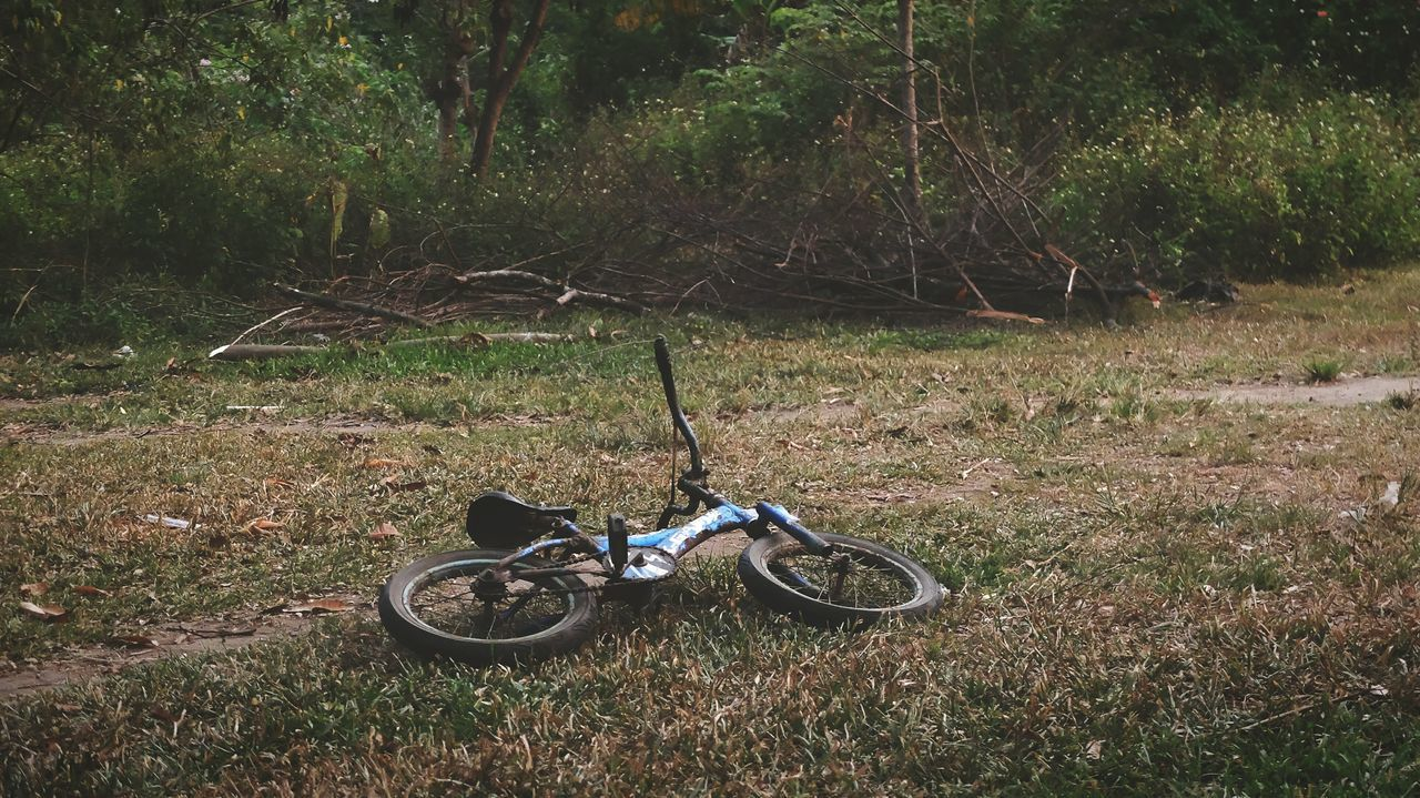 grass, bicycle, field, transportation, abandoned, mode of transport, no people, wheel, land vehicle, day, stationary, nature, outdoors, growth, landscape