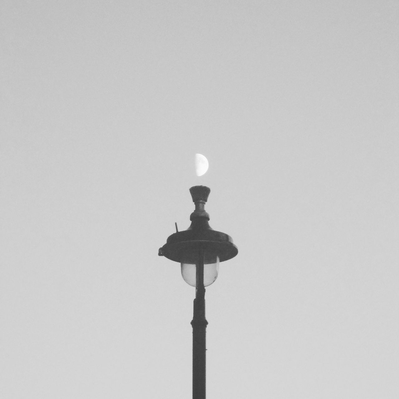 lighting equipment, copy space, low angle view, clear sky, no people, moon, floodlight, illuminated, outdoors, bird, nature, day, sky