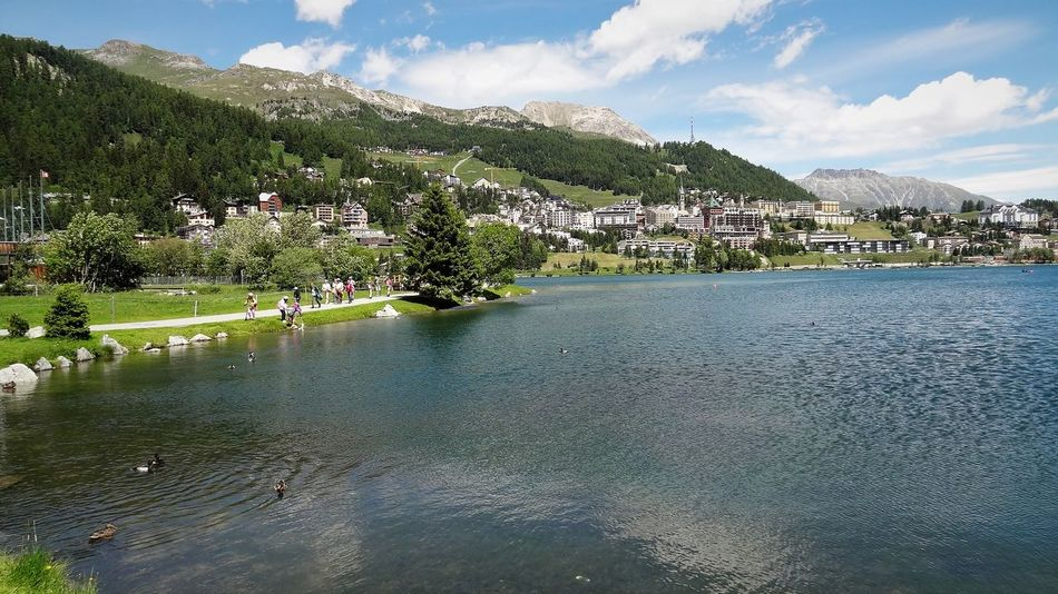 Skyline Saint Moritz Architecture Built Structure Cityscape Cloud - Sky Day Grass Graubünden Green Color Harbor Lago Di Saint Moritz Lake Landscape Mountain Nature No People Outdoors Reflection Scenics Schweiz Schweizer Alpen Sky Tree Water