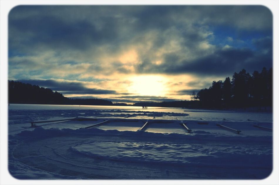 Nature Sunshine Winter Winter Sun