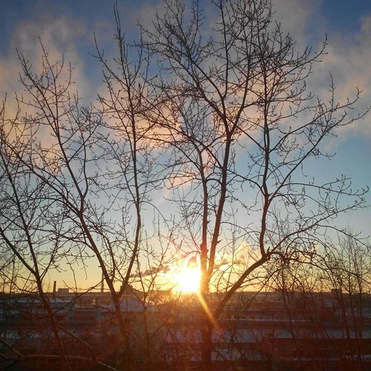 омск сибирь утро индустриальныйрассвет зима январь Морозисолнце безфильтров Omsk Siberia Industrialsunrise Winter Frost Frostandsun Nofilter