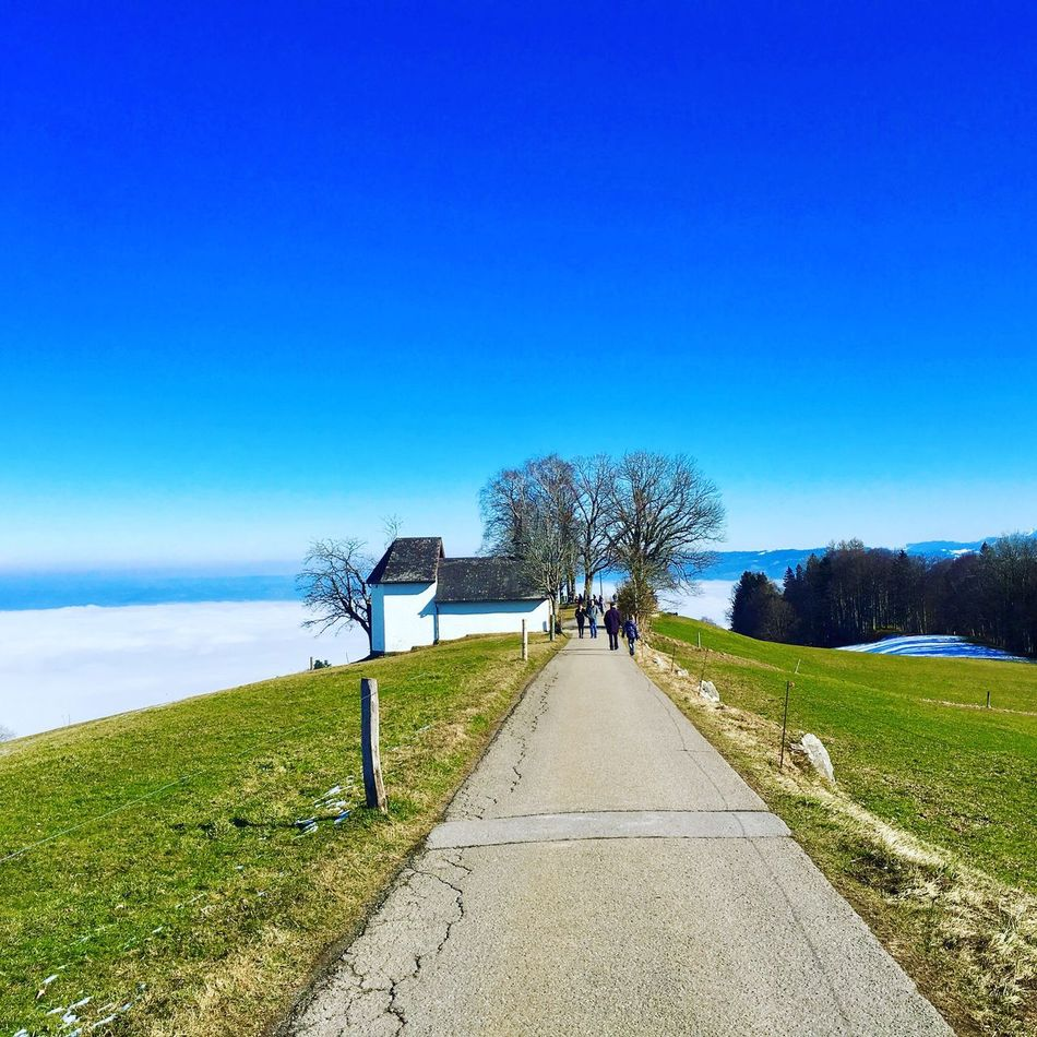 Wiehnacht Appenzellerland The Way Forward Tree Clear Sky Road Grass Beauty In Nature Day Landscape Walk Nature Switzerland Weg Suisse  Schweiz Beautiful Day