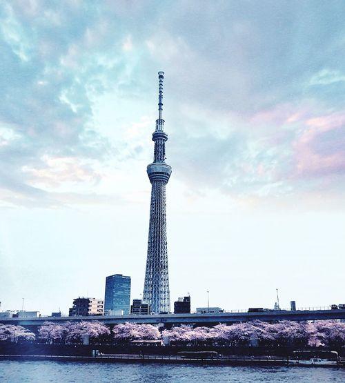 Tokyo Tower Tokyo,Japan Tokyo Street Photography Japan Photography EyeEmJapan