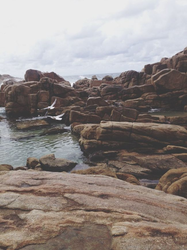 Urban Escape Mermaid Pools Swimming Beach