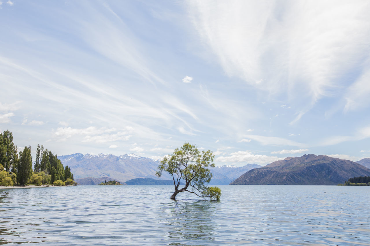 Beauty In Nature Cloud - Sky Day Lake Mountain Mountain Range Nature No People Outdoors Scenics Sky That Wanaka Tree Tranquil Scene Tranquility Tree Wanaka Wanaka New Zealand Wanaka Tree Wanakalake Water Waterfront