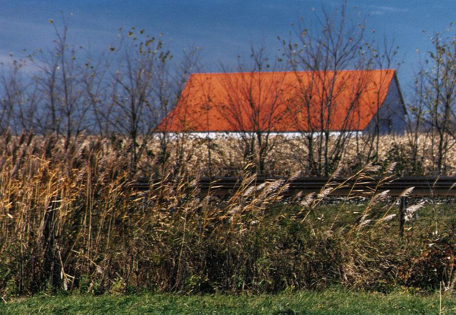 Orange Farmland Farm Fields From The Road Blue Sky