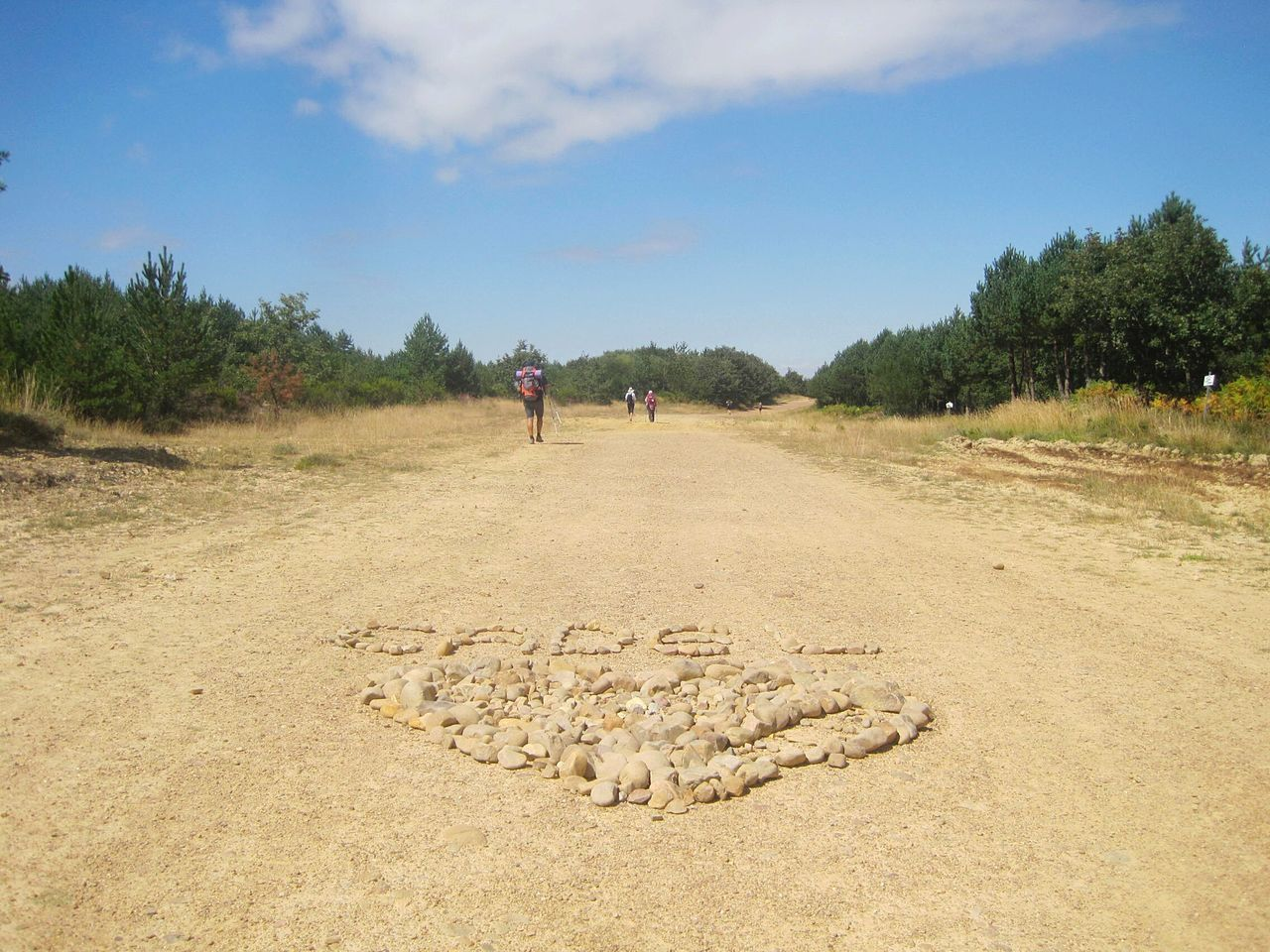 Going The Distance, El Camino De Santiago , CaminodeSantiago Logroño