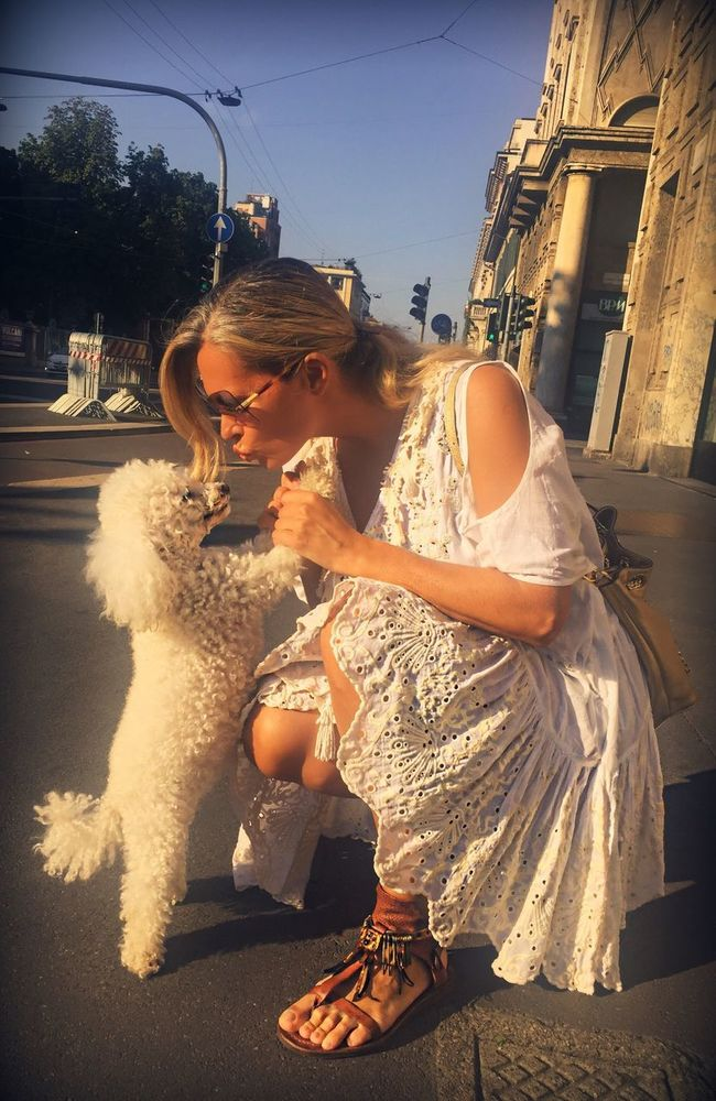 Dog Poodle Poodletoy White Pet Pet Photography  Love Kiss Togheterness Loyal Lifestyles Leisure Activity Holding Street Sunlight Person Day Woman Dress