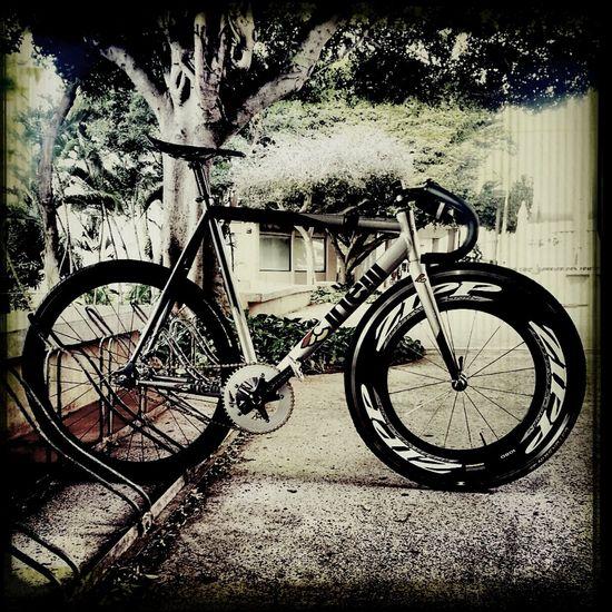 Morning ride. Hawaii Cinelli Fixedgear Zipp Omniums Suginozen Track Frame Sram Philwood Speed Weaponry Zipp 1080 Njs Track Bike
