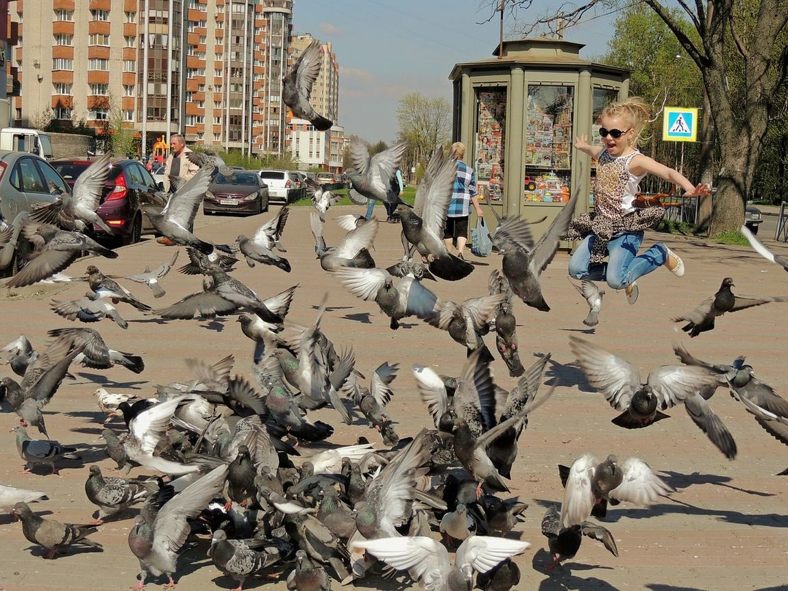 Icanfly Dove In The City Daughter Sankt-peterburg Springtime Fly Girl Jump Baby