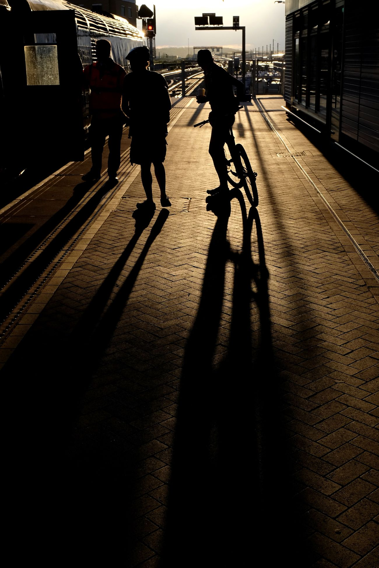 Platform 8B at Reading Station. Cyclist puts his bike on the train in the evening light. Train Station Commuting Fujifilm Light And Shadow Railways