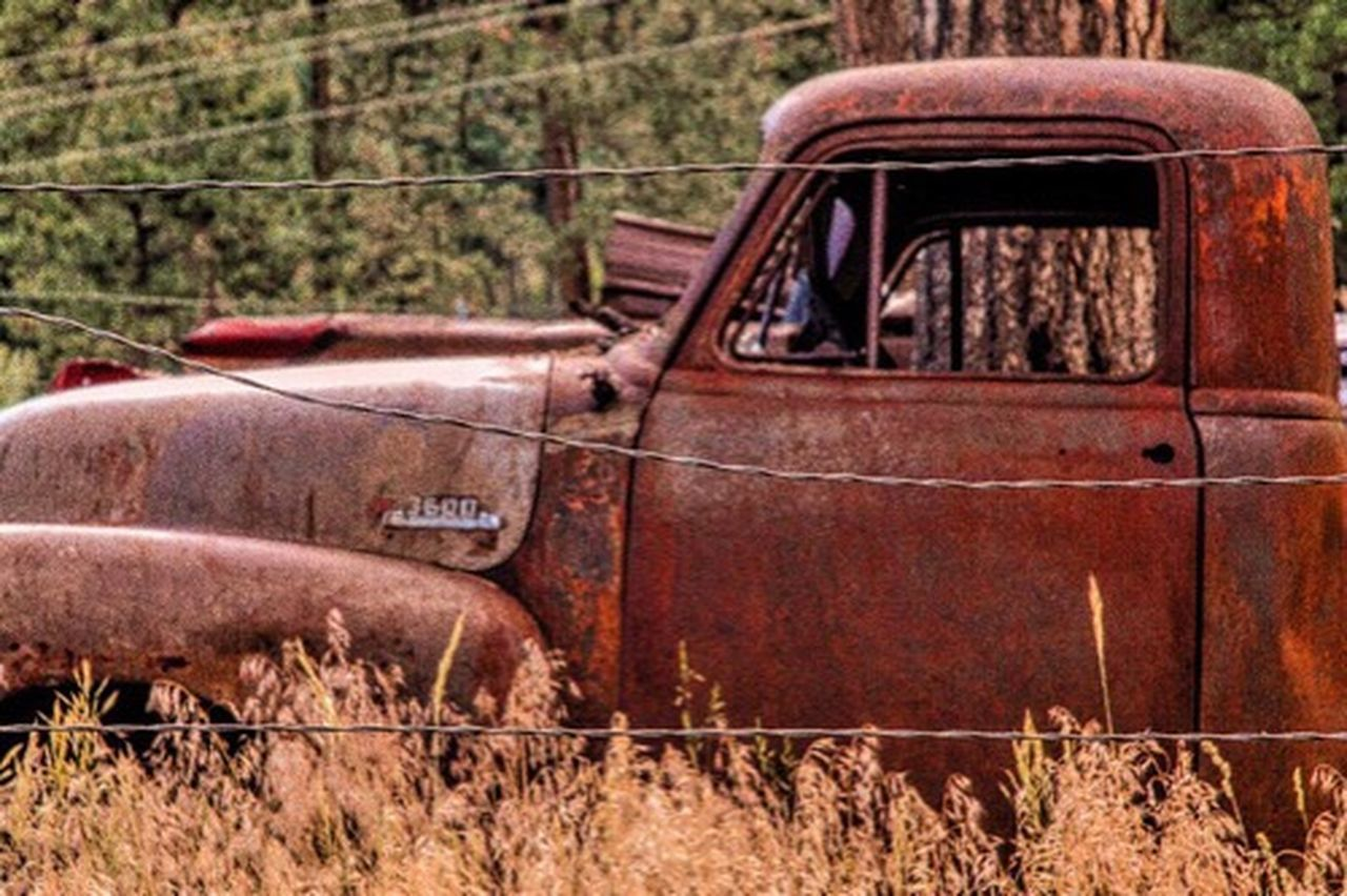 rusty, abandoned, obsolete, damaged, run-down, deterioration, transportation, bad condition, metal, weathered, day, no people, outdoors, car, red, pick-up truck, rotting, car door, grass, close-up