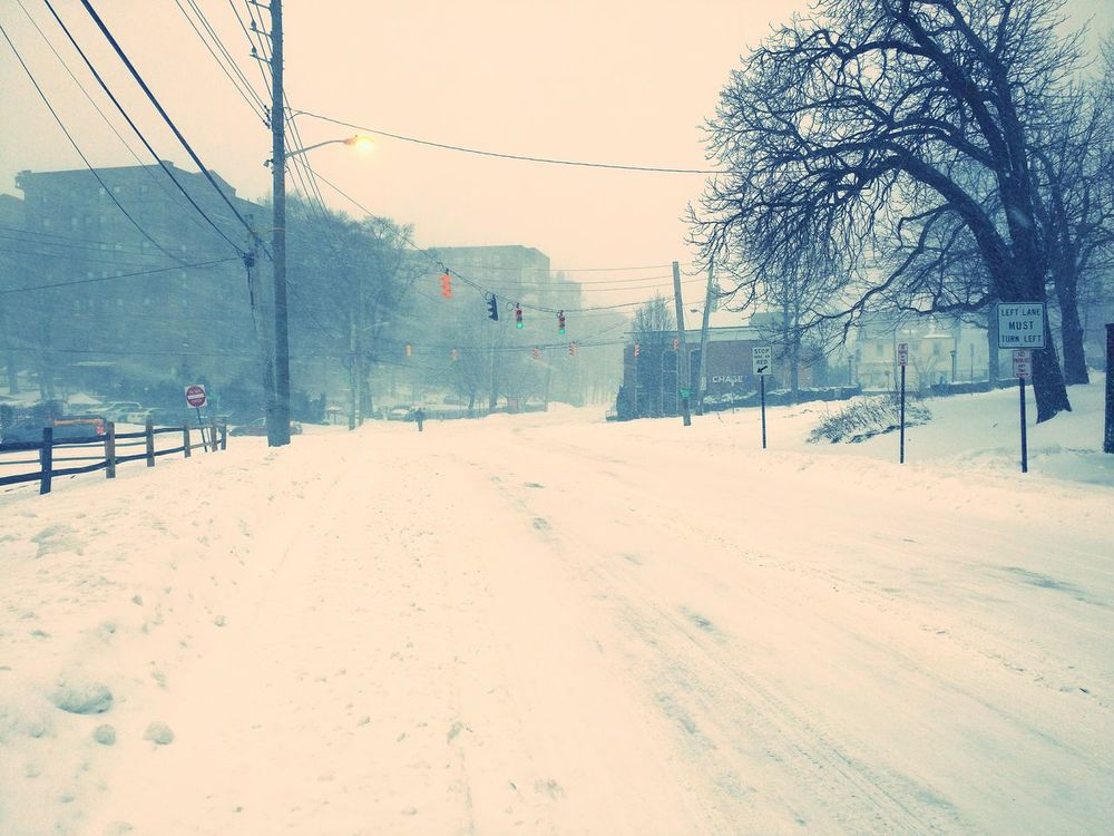 Blizzard 2016 Blizzard Newyork Westchester, NY Westchester Wind Storm Snow ❄ Snow Day Snow Covered Street Photography Traffic Trafficlights