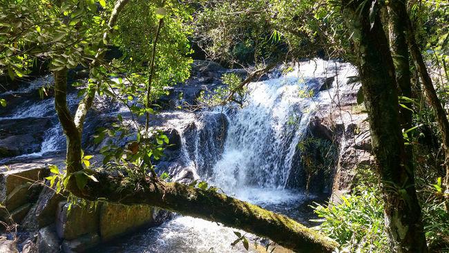 Waterfall in Cabreuva, São Paulo Waterfall Water Photo Cascata Nature Green