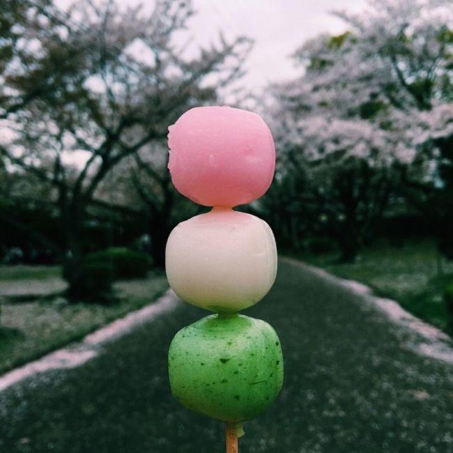 The three-colored dango (sweet dumplings) Japanese people eat during the cherry blossom season🍡 Japan Japanese Food Japanese Culture Sweets Japanese Sweets Cherry Blossoms Dango だんご Foodphotography Foodporn
