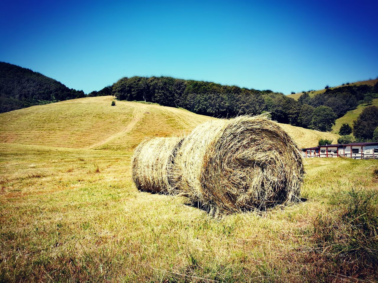 Hay Bales On Landscape Against Clear Blue Sky
