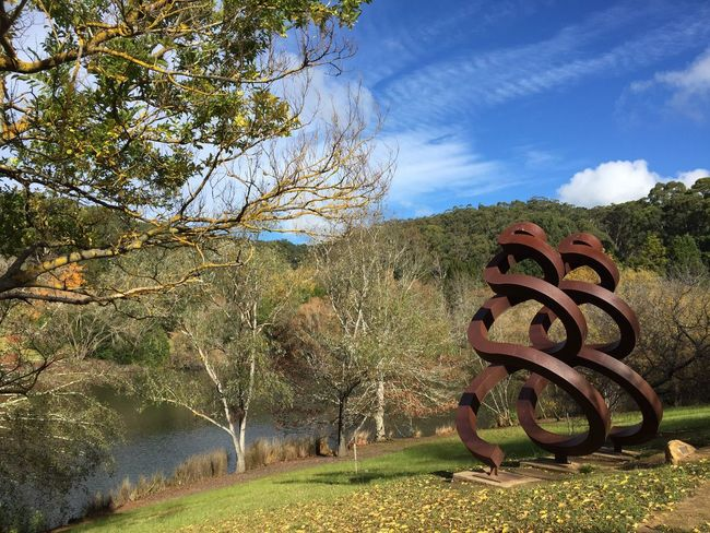 Autumn Days Mt Lofty Botanical Gardens Sculpture Tranquil Scene Beauty In Nature