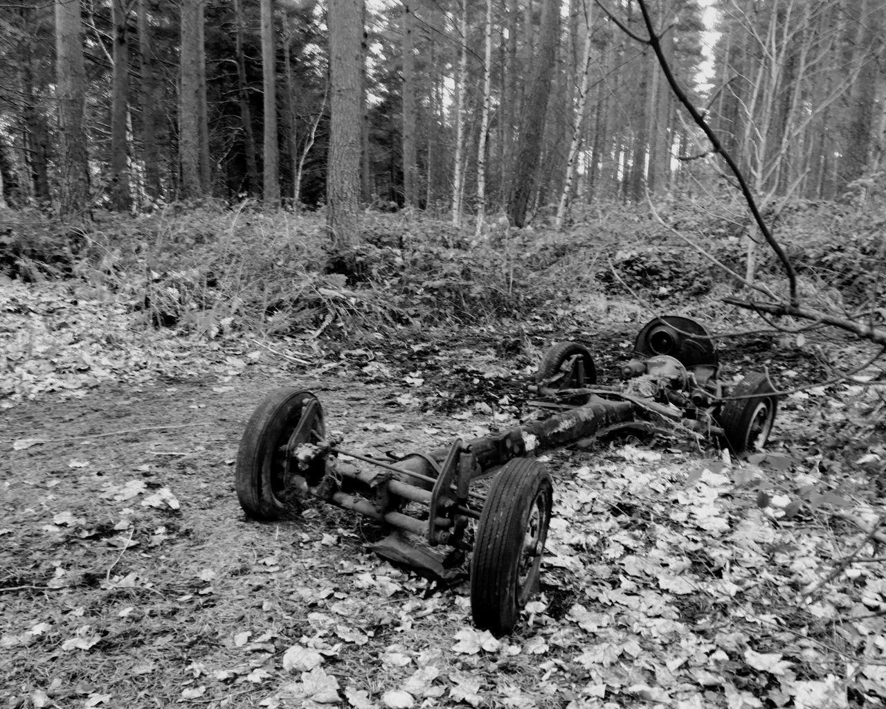 Car Volkswagen New Nature 3XSPUnity 3XSPUnity 3XSPhotographyUnity 3XSPhotographiUnity