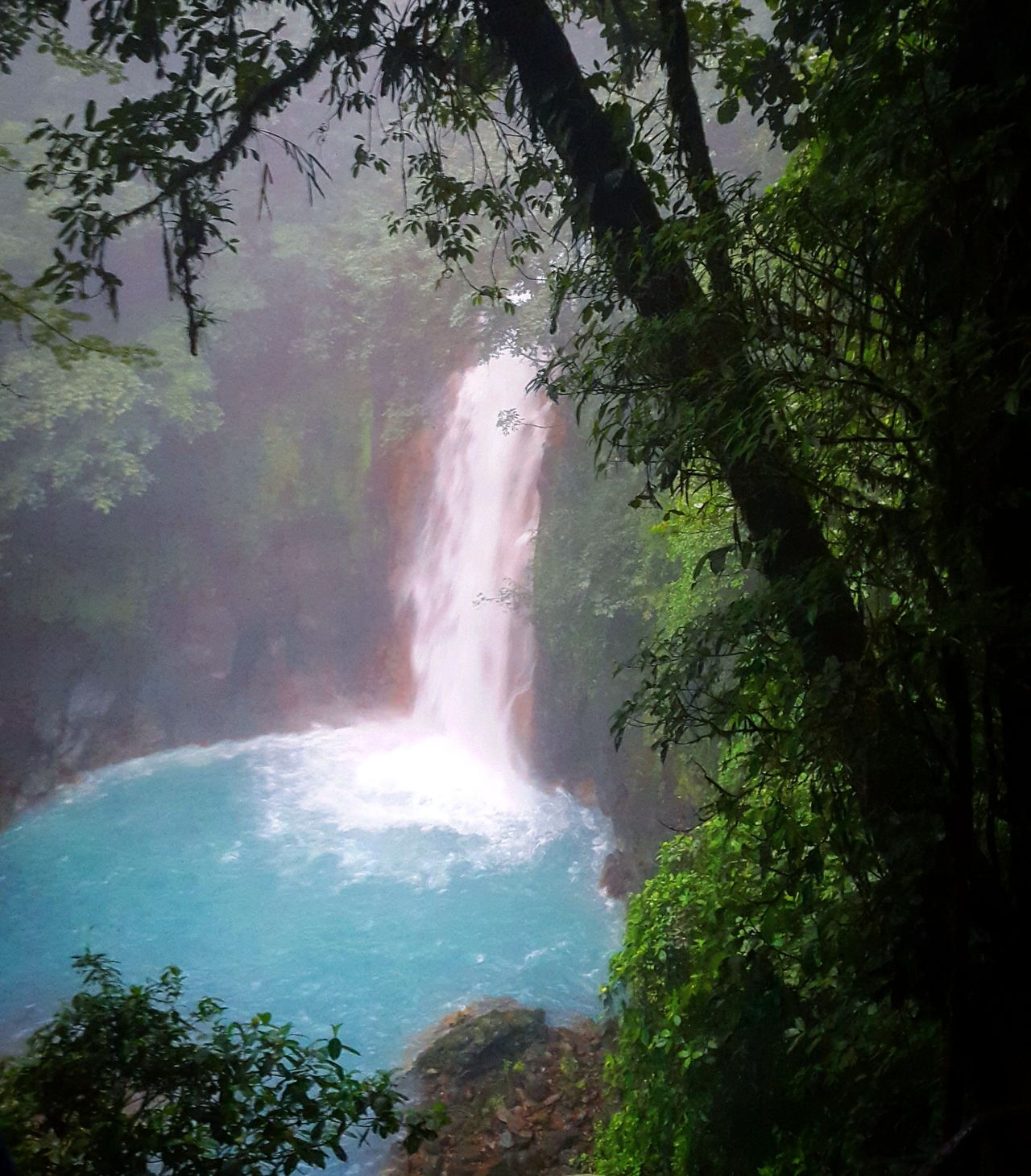 Wonderful_places Hidden Costa Rica Travelwithme Travel Photography Forest Postcard Landscape_Collection Anastasiasadvantures Eye4photography  Taking Photos Anastasia Feel The Journey Landscape_photography Travelagent Travelplanning Travel The World Rainforest Landscape Waterfall Bright Colour Of Life Travel Destinations Traveldeeper Showcase June