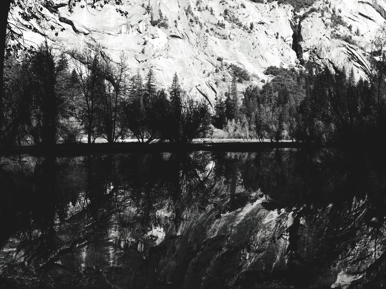 Reflection Nature Water Low Angle View Ynp Yosemite National Park Mirror Lake Outdoors Outdoor Photography IPhoneography Vscocam California Love CA