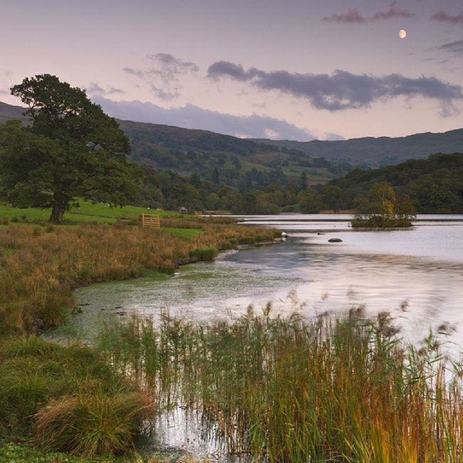 Rydal lake Cumbria Lakedistrict Landscape_lovers landscape nature_seekers nature picoftheday photooftheday instacool instagram instagood www.damianshields.com