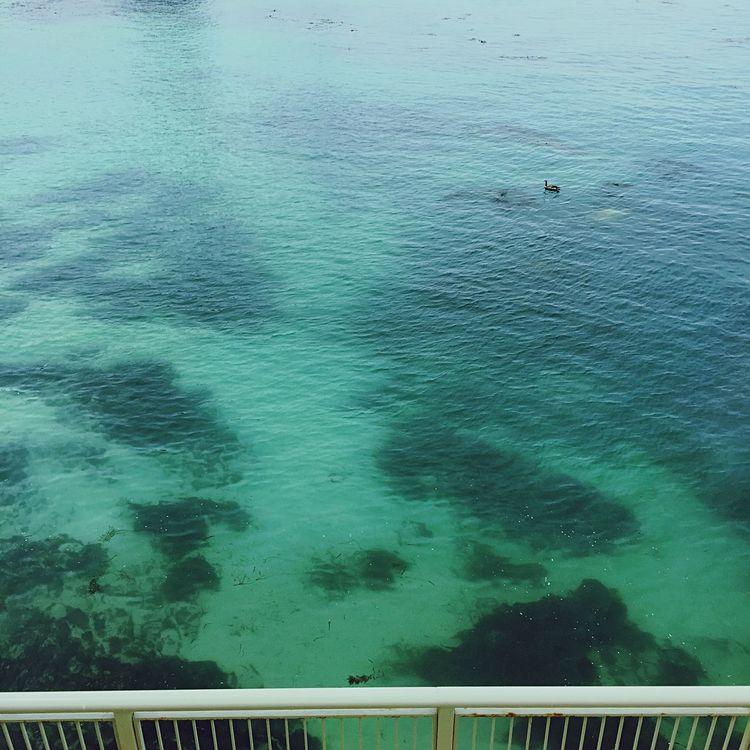 Seaside Popofcolor Seagreen