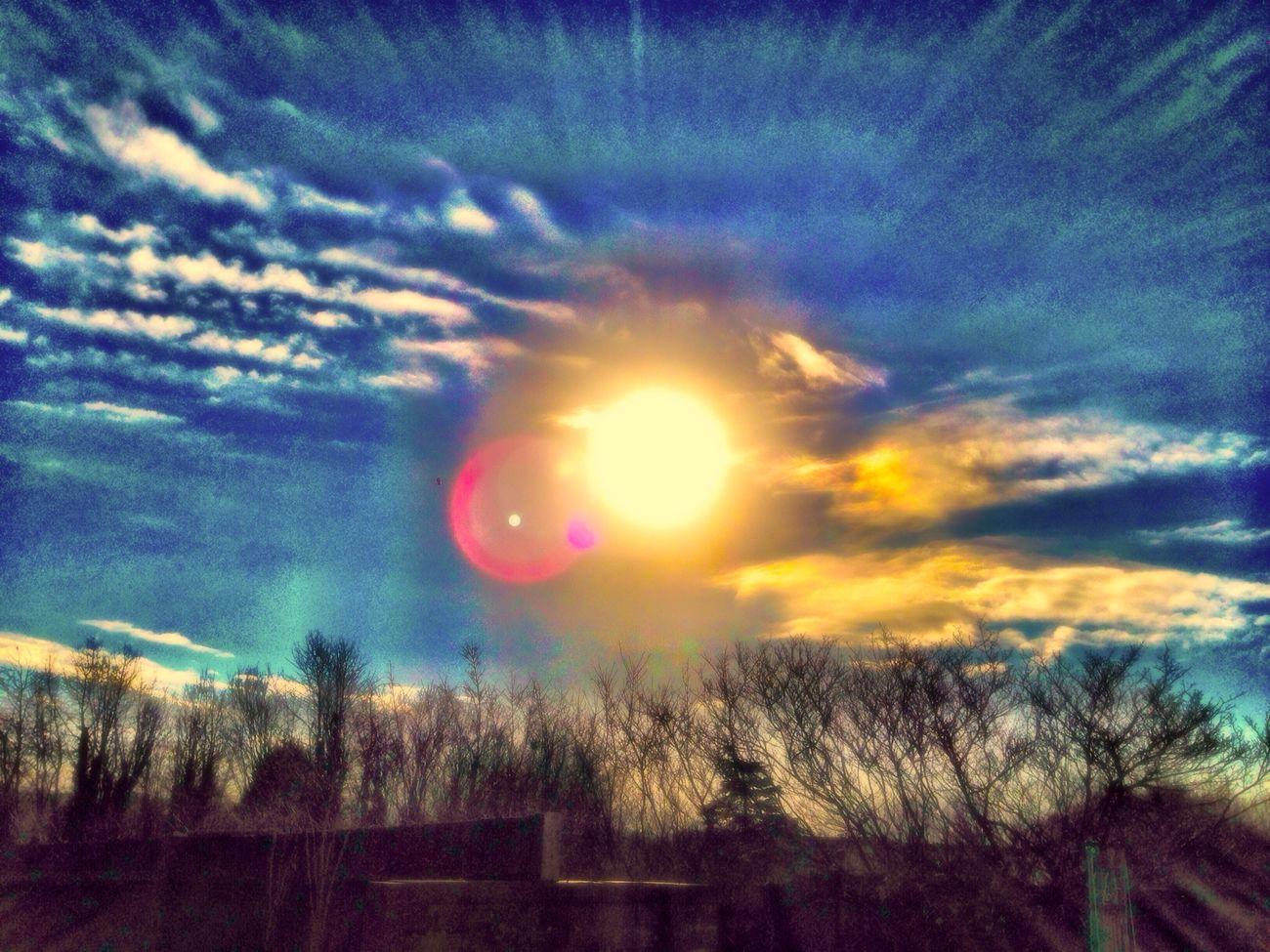 Soaking Up The Sun Enjoying The Sun