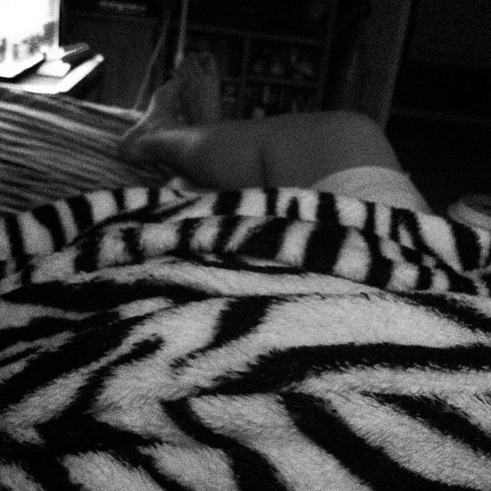 Day 11 ; OOTD ; basketball shorts and a t-shirt when I'm hot. Zebra print pajama pants when I'm freezing. 104 .4 Fever Sick Wheresmymeds