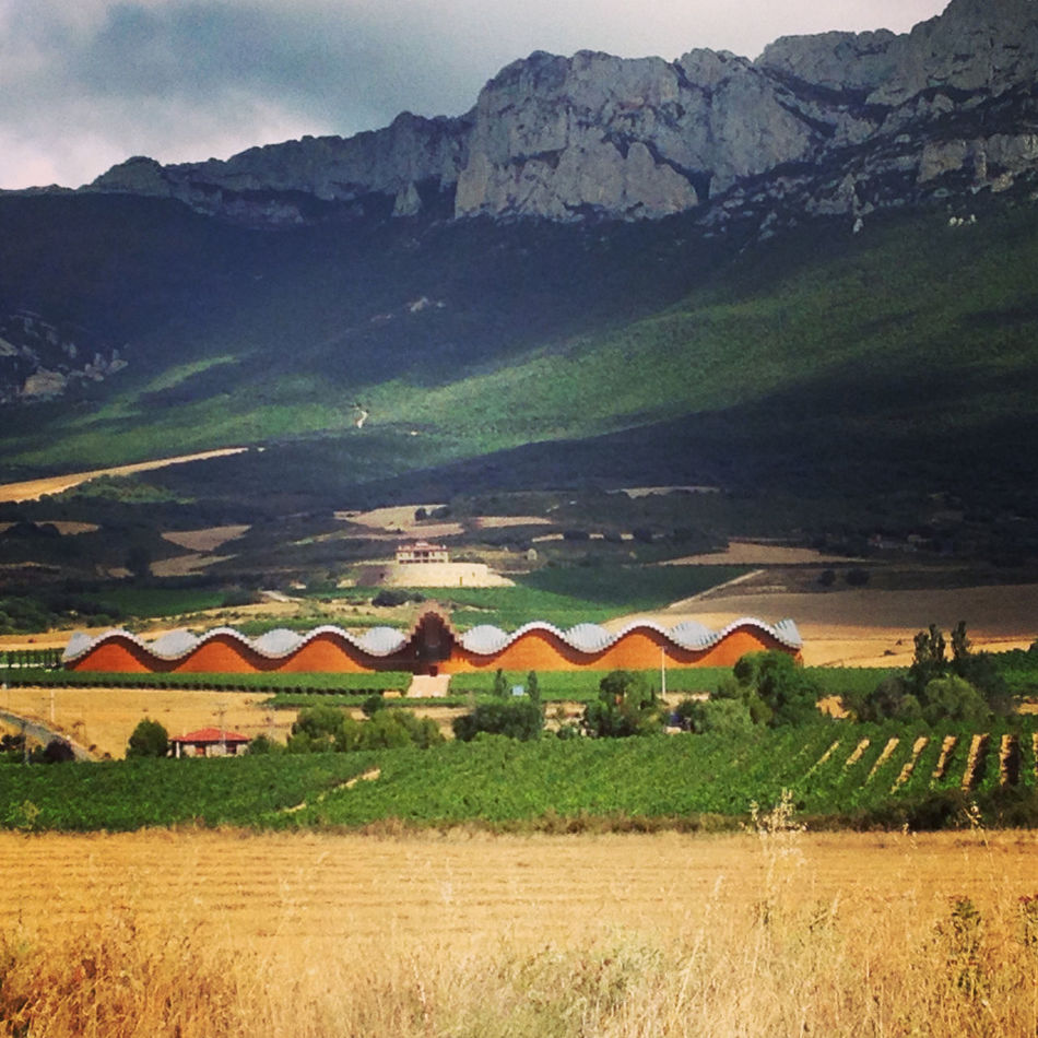 Beautiful stock photos of wine, Agriculture, Architecture, Beauty In Nature, Bodegas Ysios