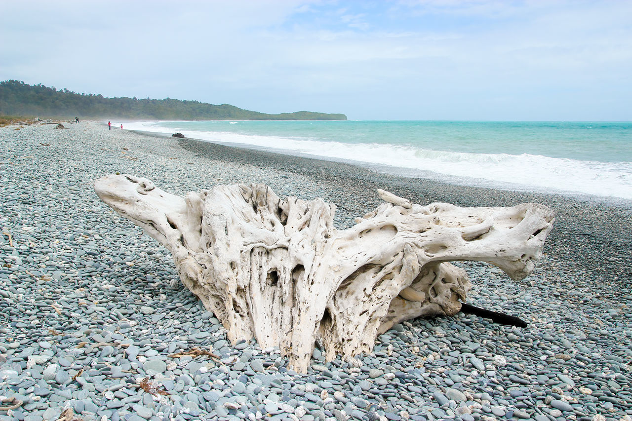 A large driftwood on pebbles of Gillespies Beach near Fox Glacier, New Zealand. Attractions Beach BIG Cold Driftwood Fox Glacier Gillespies Grey Greymount Landscape Large Group Of Objects New Zealand Pebbles Sea Sky South Island Travel Water Waves West Coast Wood