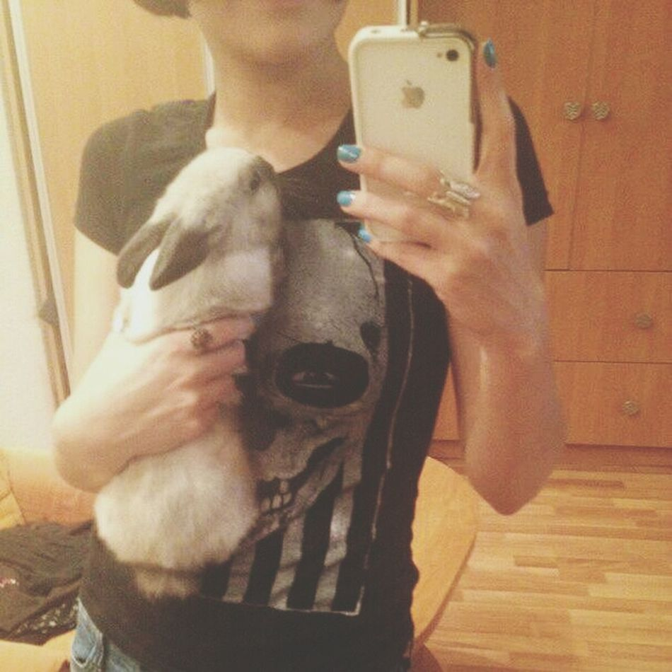 БЕЗ МЭЙКА без головы Rabbit Bunny  pets
