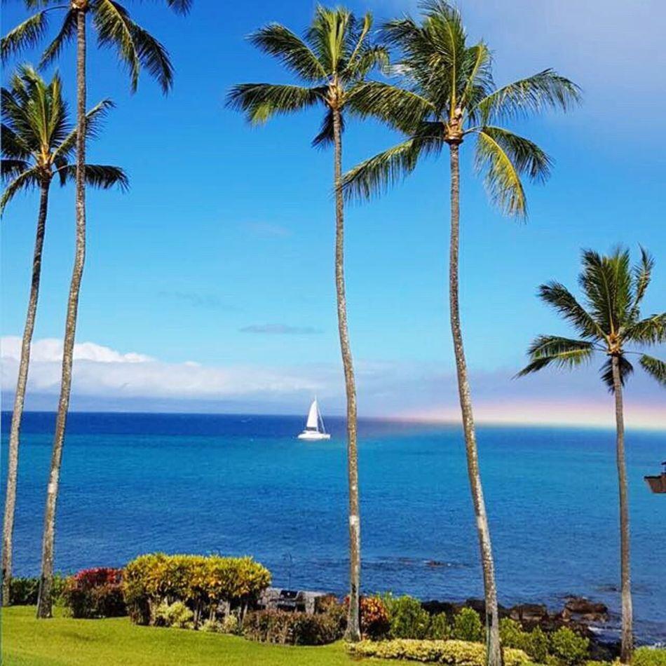 Hollidays Amazing Underthesea Hawaii Boat Beautiful