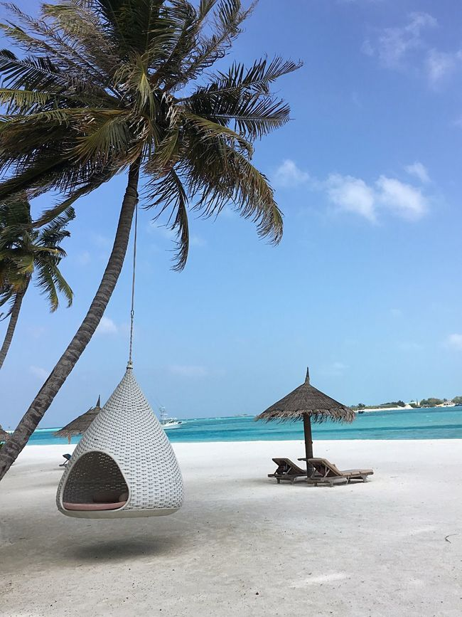 Maldives Island Travel Hotel Showcase: January Photographic Memory