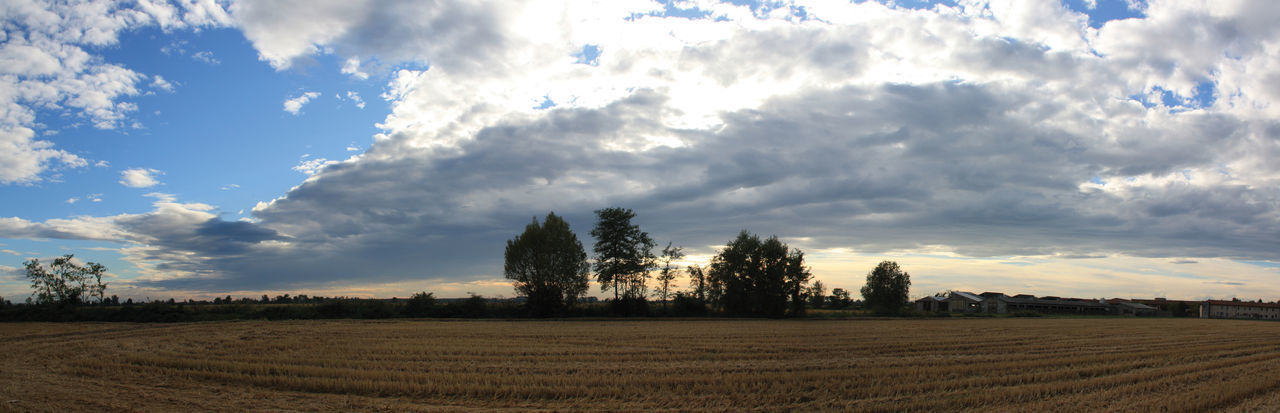 Panorama Agriculture Beauty In Nature Blue Cloud Cloud - Sky Cloudy Crop  Cultivated Land Day EyeEm Best Shots EyeEm Nature Lover Field Grass Growth Horizon Over Land Landscape Nature No People Non-urban Scene Outdoors Panorama Rural Scene Scenics Sky Tranquil Scene