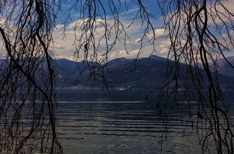Tree Nature Sunset Sky Sunlight Reflection No People Water Outdoors Lake Beauty In Nature Silhouette EyeEm Best Edits Tranquility Refraction EyeEm Italy EyeEm Gallery EyeEmBestPics Waves Day Luino Italy Lake View Lombardia Clouds And Sky
