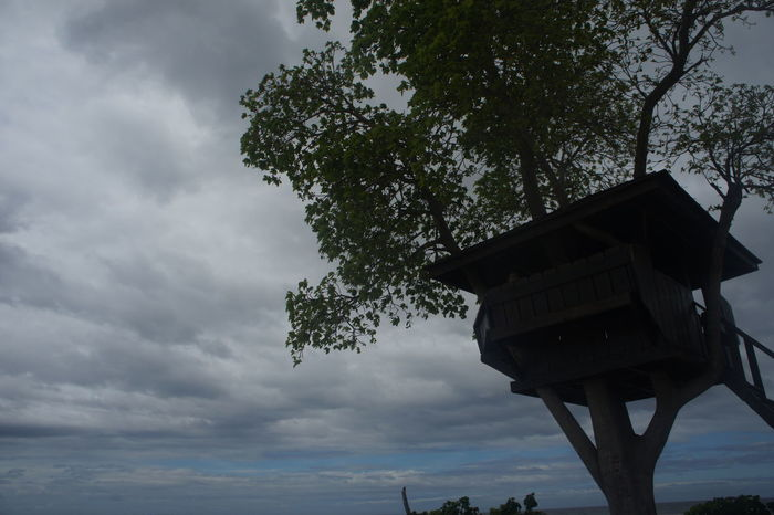 Nature Leaf Outdoors Beauty In Nature No People Sky Tree Low Angle View Scenery Silhouette Clouds And Sky Cloud Kalanggaman Kalanggaman Island Island Islandlife Nature Photography Nature Beauty
