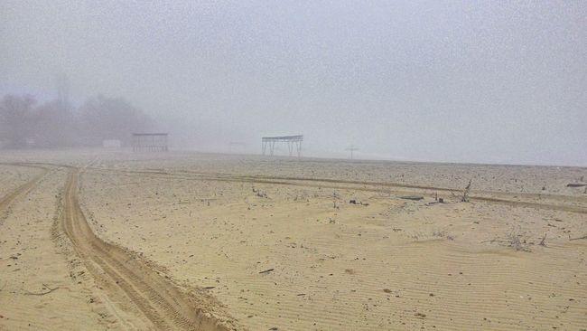 Mist Beach Road Nature Landscape