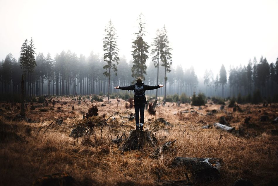 Beautiful stock photos of nature, Arms Outstretched, Beauty In Nature, Day, Fog