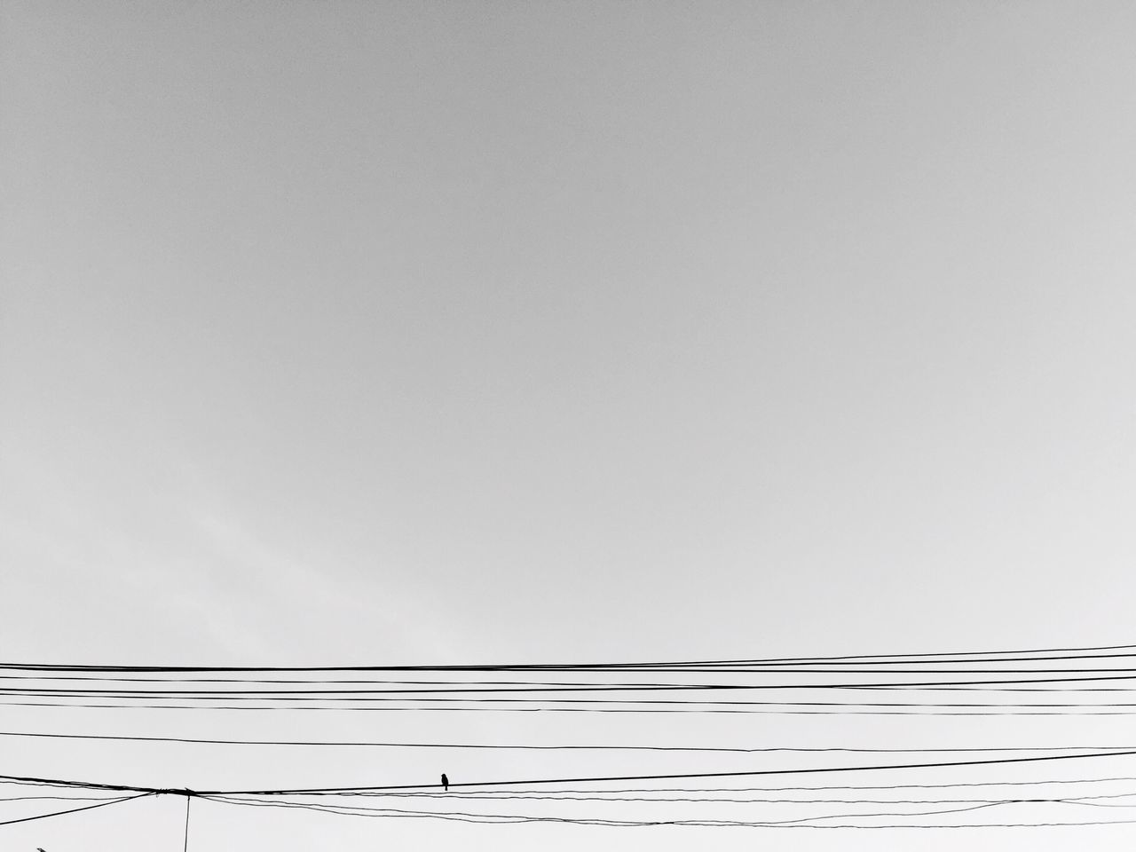 cable, copy space, connection, power supply, no people, power line, electricity, low angle view, complexity, technology, white background, day, outdoors, sky